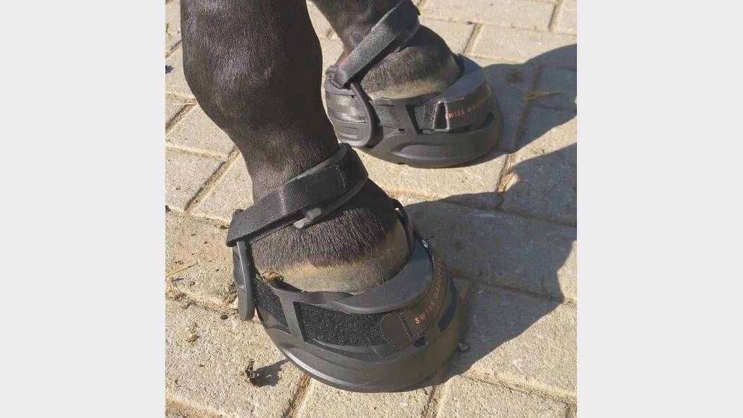 Der Horse Shoe im Einsatz