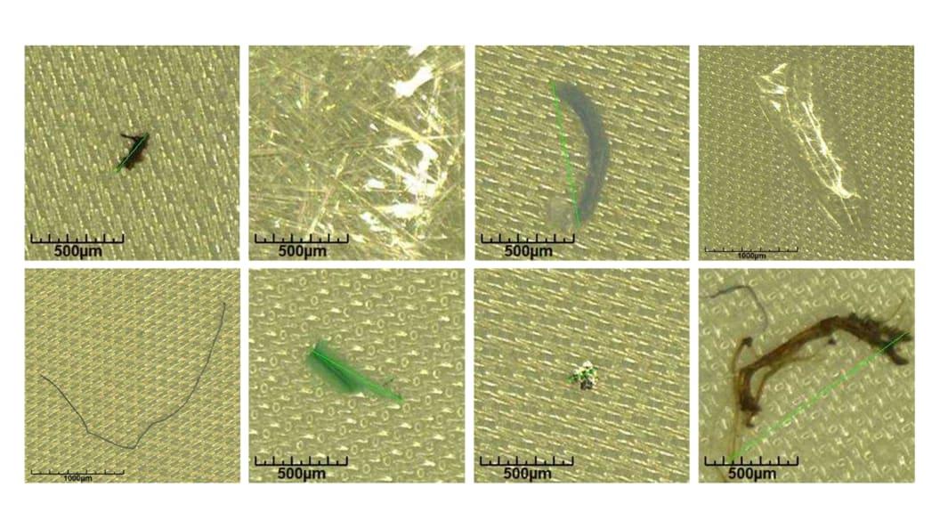 Lichtmikroskopische Bilder von verschiedenen Partikelarten die auf der Polymerfolie gefunden wurden