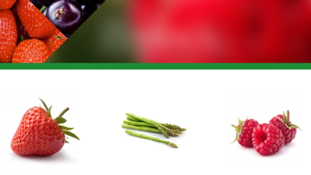 Plants for professional growers