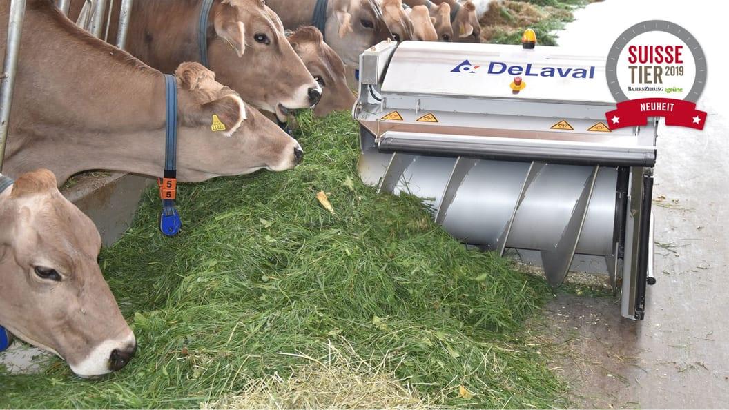Der DeLaval OptiDuo™ schiebt auch problemlos Heu und Gras zu
