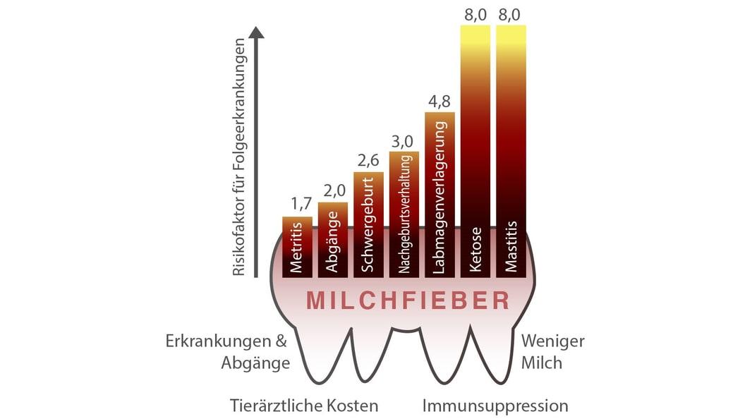 Der Abfall des Calciumspiegels im Blut hat große Auswirkungen auf den Stoffwechsel der Tiere.
