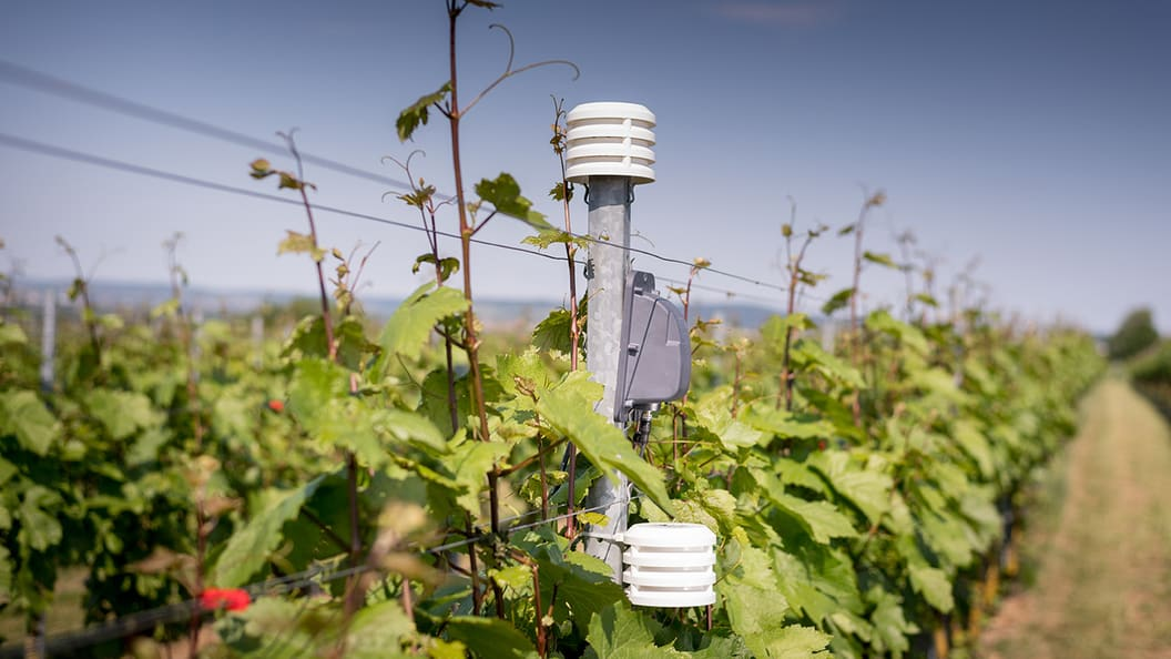 Connected sensor systems for efficient, sustainable agriculture