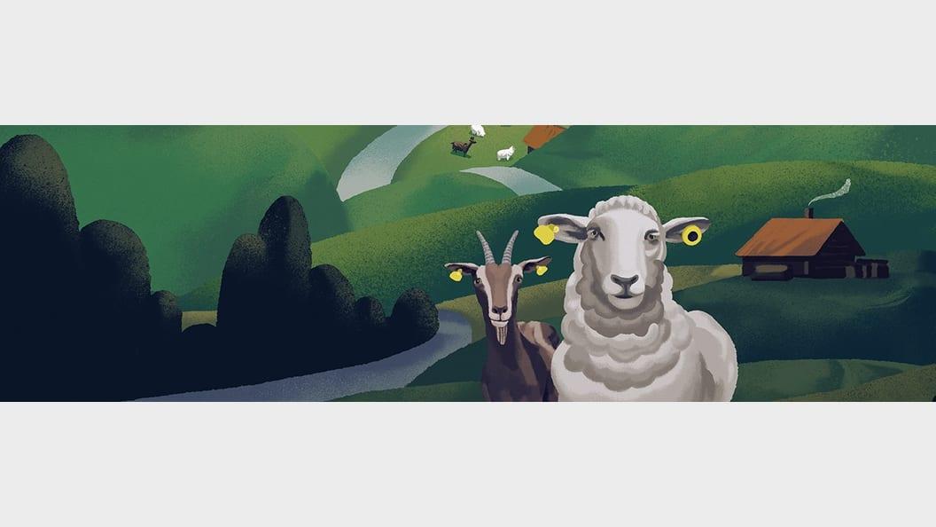 Schafe und Ziegen in der Tierverkehrsdatenbank (TVD)