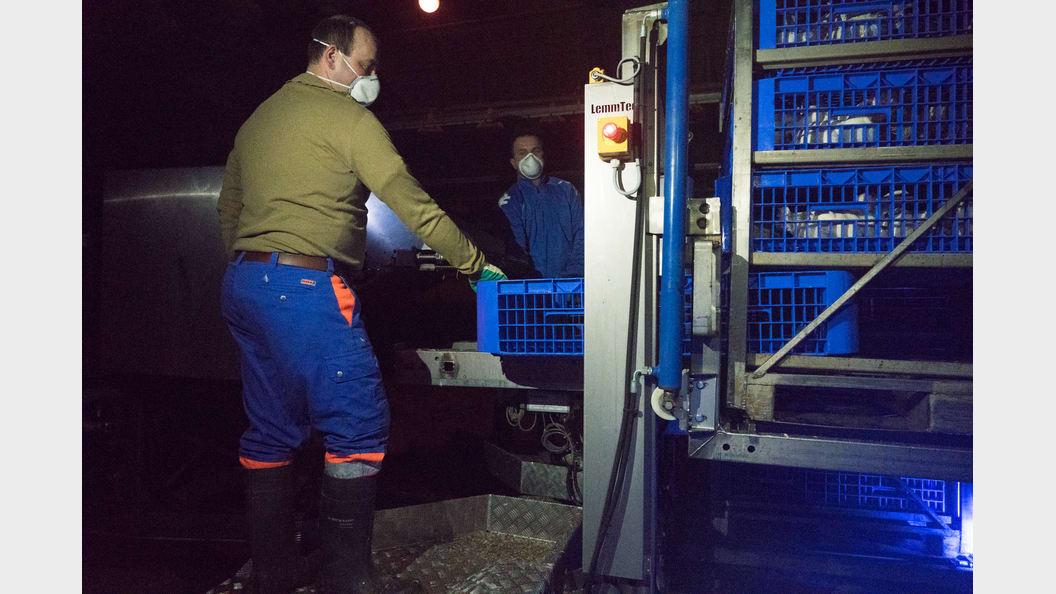 Verlad in frifag-Containergebinde. Unterstütztes und kontrolliertes Schliessen der Schubladen.
