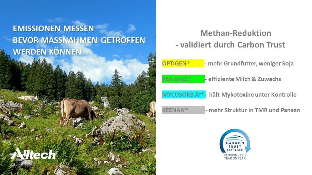 Methan-Reduktion