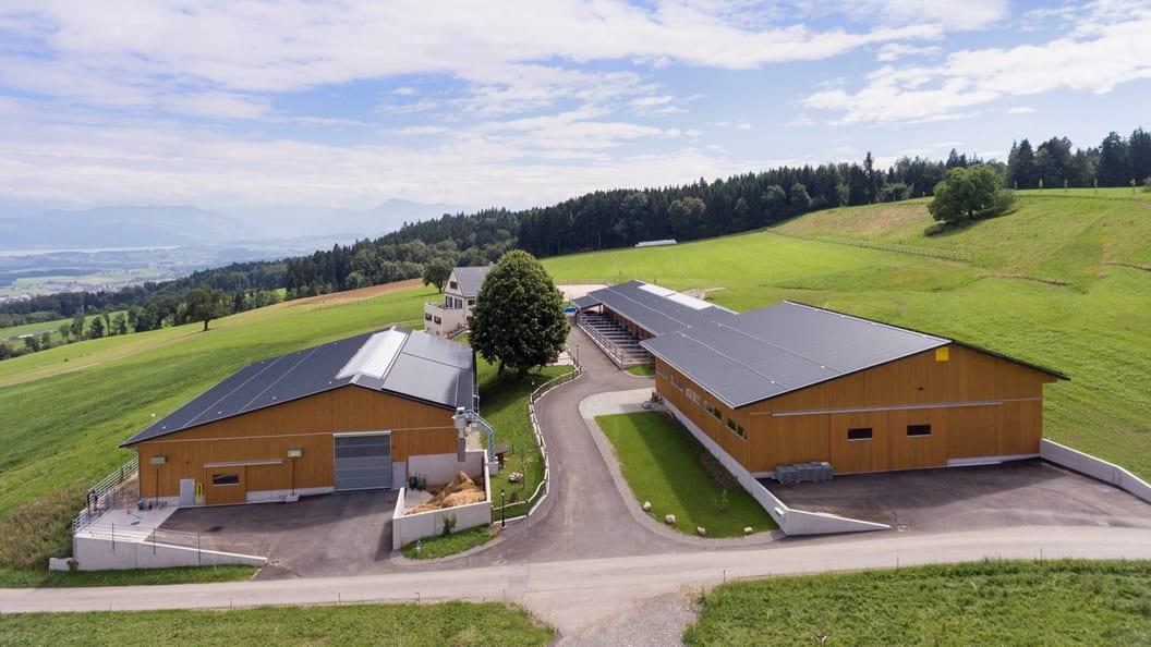Siedlung in Beinwil AG mit Laufstall, Pferdestall und Remise