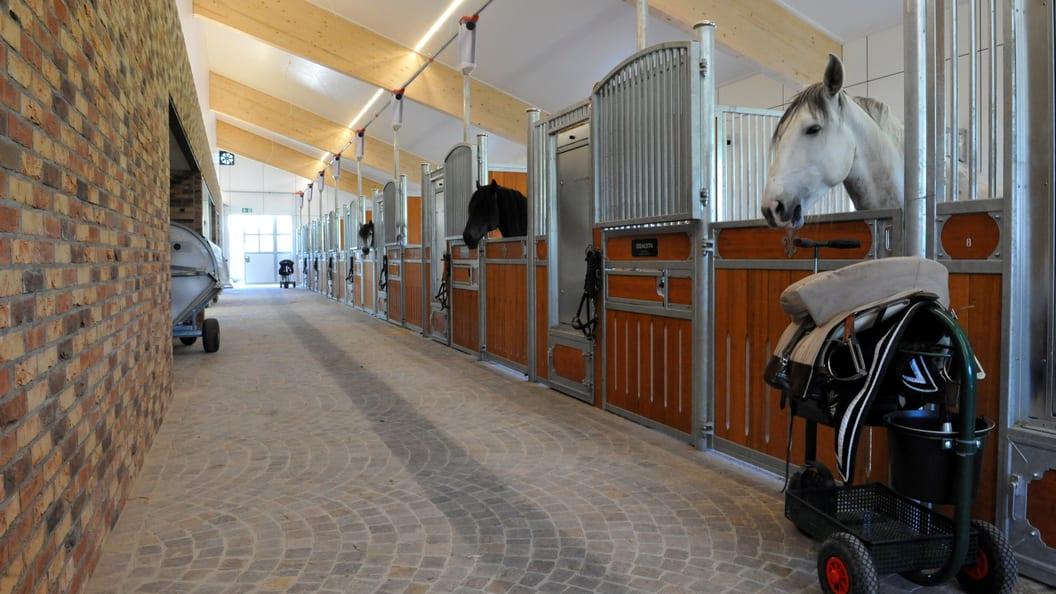 Pferdestall und Remise in Rüti ZH