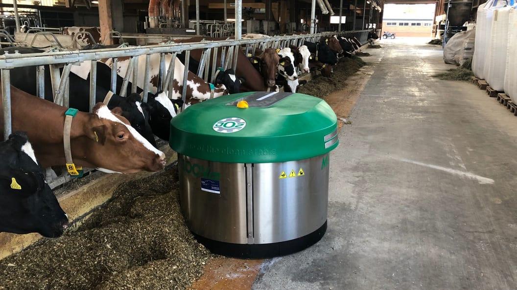 Der JOZ MOOV Futterzuschieberoboter ermöglicht den Tieren 24 Stunden Futterzugang am Tag.