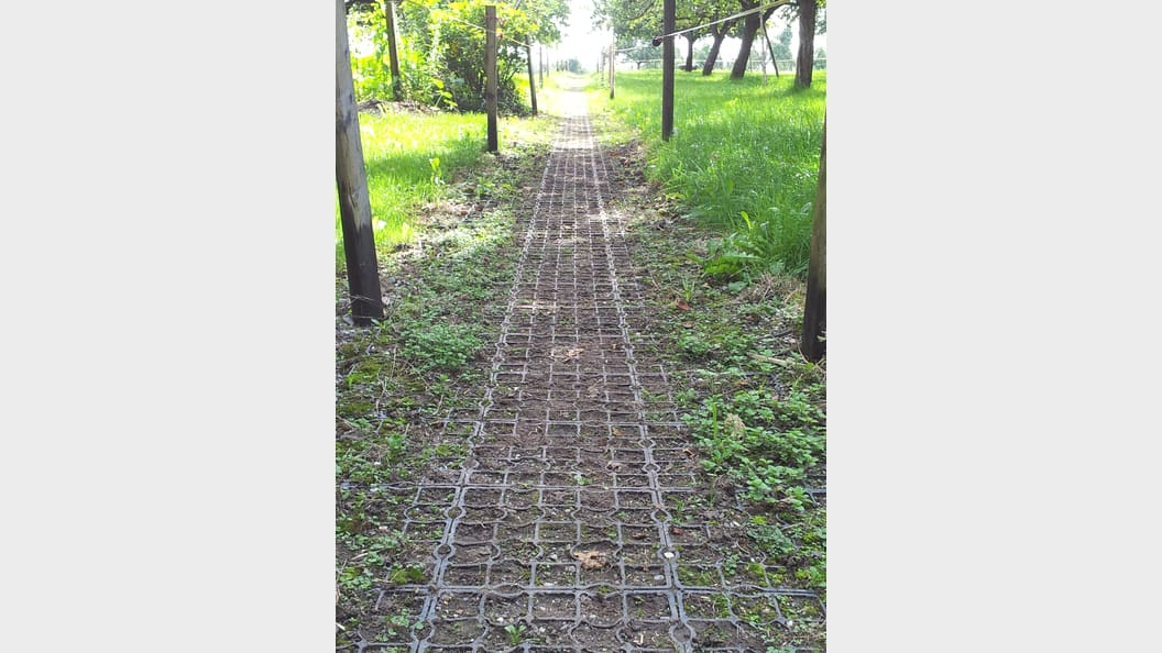 Stark beanspruchte Flächen wie Weideeingänge - ohne Matsch - dank Ecoraster