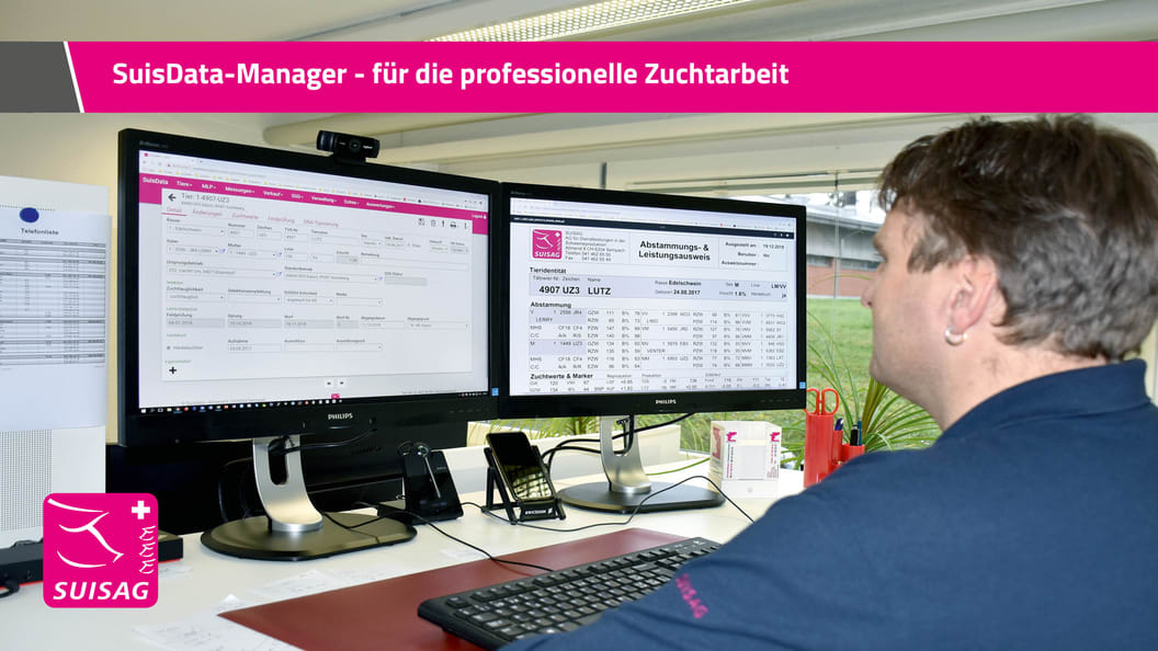 SuisData-Manager