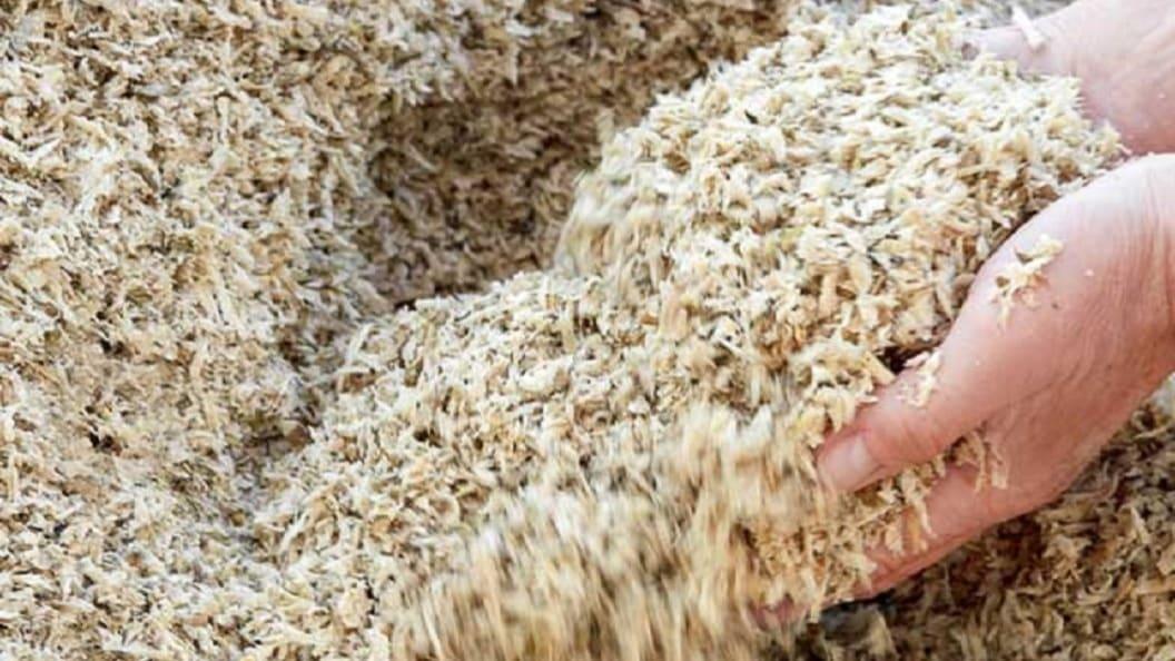 Zuckerrübenschnitzel: Hohe Leistungen und gut für den Pansen