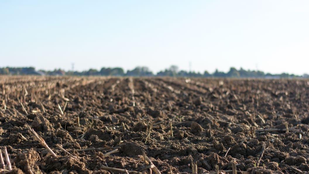 Analytik und Beratung für den Pflanzenbau