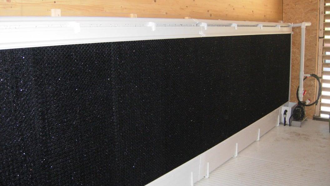 Cool Pad (Luft-Wasserkühlung) im Zuluftbereich in einem Schweinemaststall