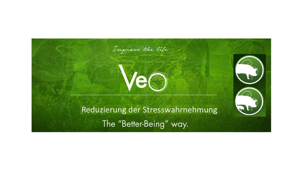 Veo: Stress reduzieren - Futteraufnahme steigern