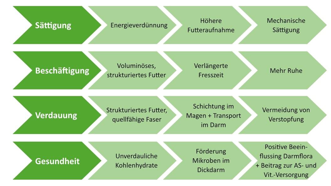 Wirkung der Faser, Quelle: Grünewald und Preissinger 2014