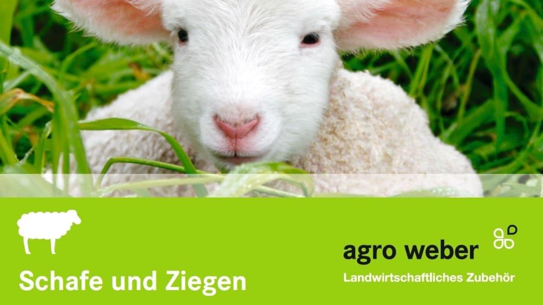 Agro Weber AG