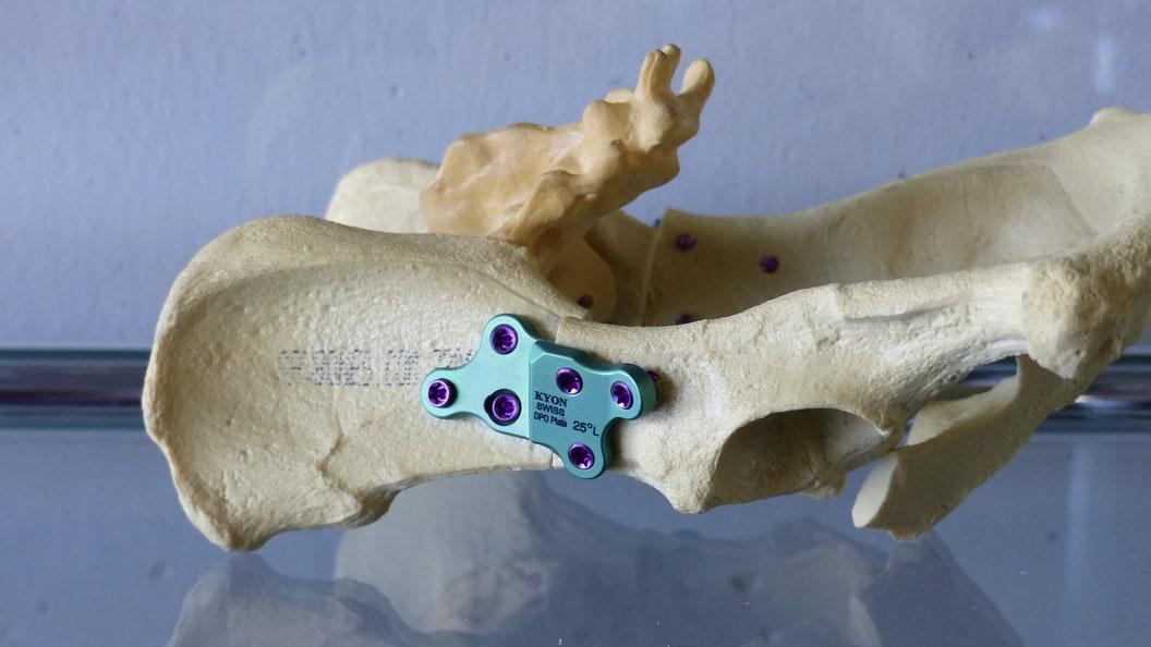 Für das Fräsen von Implantaten für die Veterinärmedizin wurden intensive Tests durchgeführt.