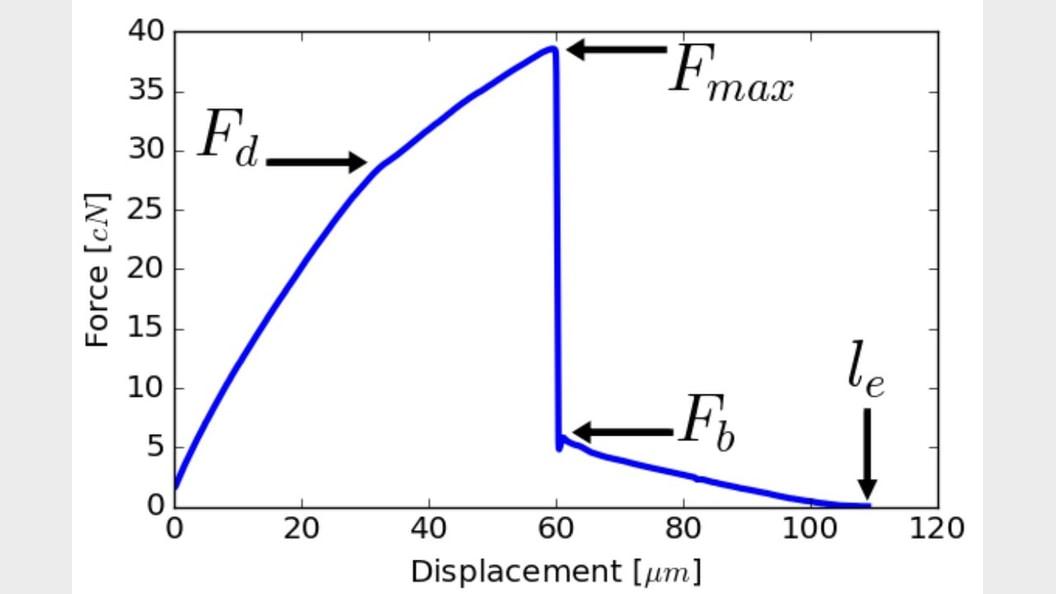 Bild 4: Typische Kraft/Auslenkungskurve, aus dem FIMATEST System