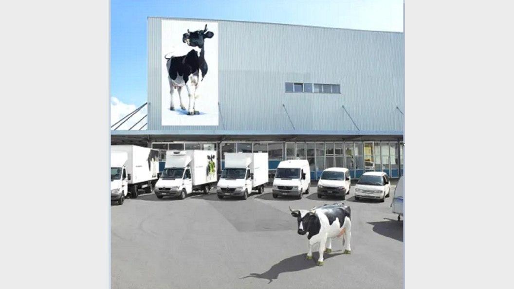 Die SMP steht zusammen mit ihren Mitgliedsorganisationen im Dienst aller Schweizer Milchproduzenten.