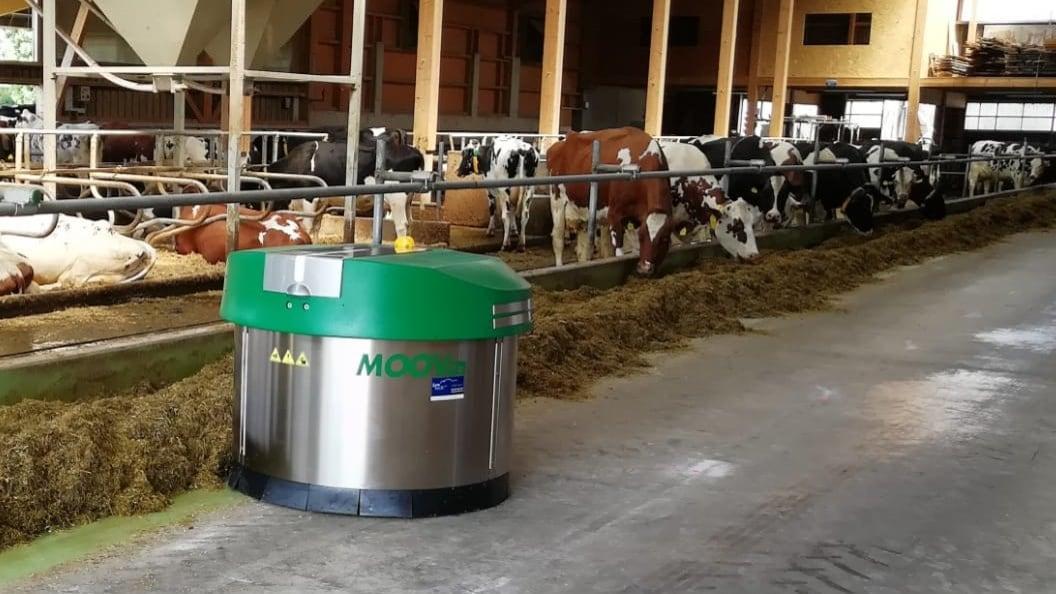 Der JOZ MOOV ermöglicht den Tieren 24 Stunden pro Tag Futterzugang.