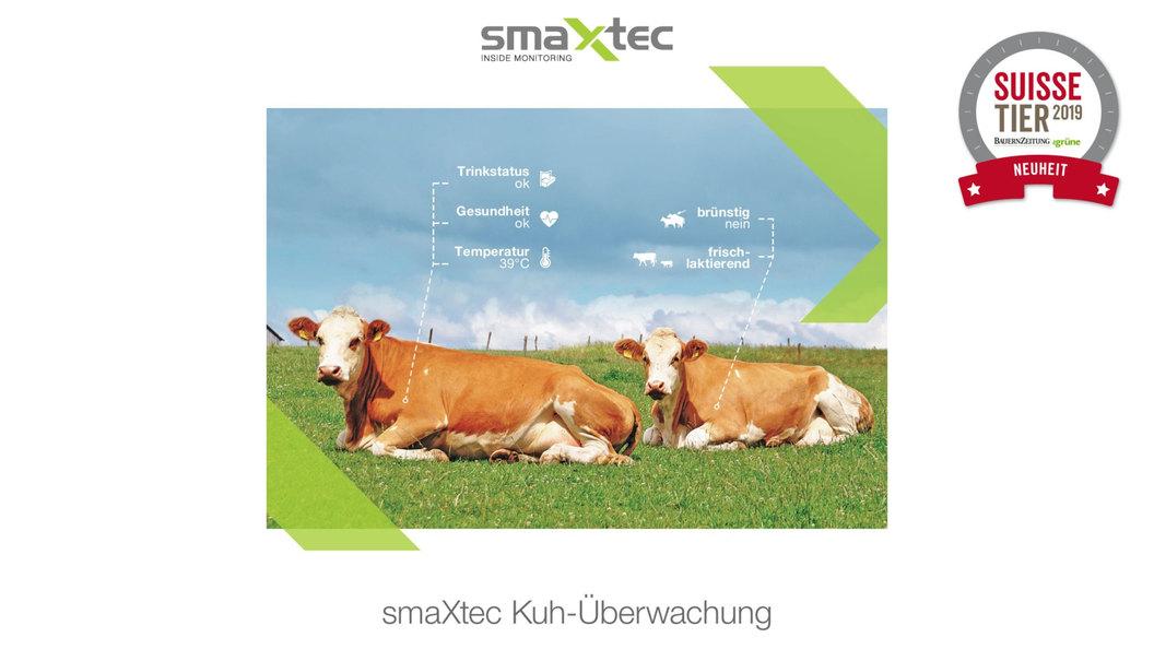 Mit smaXtec haben Sie die wichtigsten Informationen über Ihre Tiere immer im Blick.