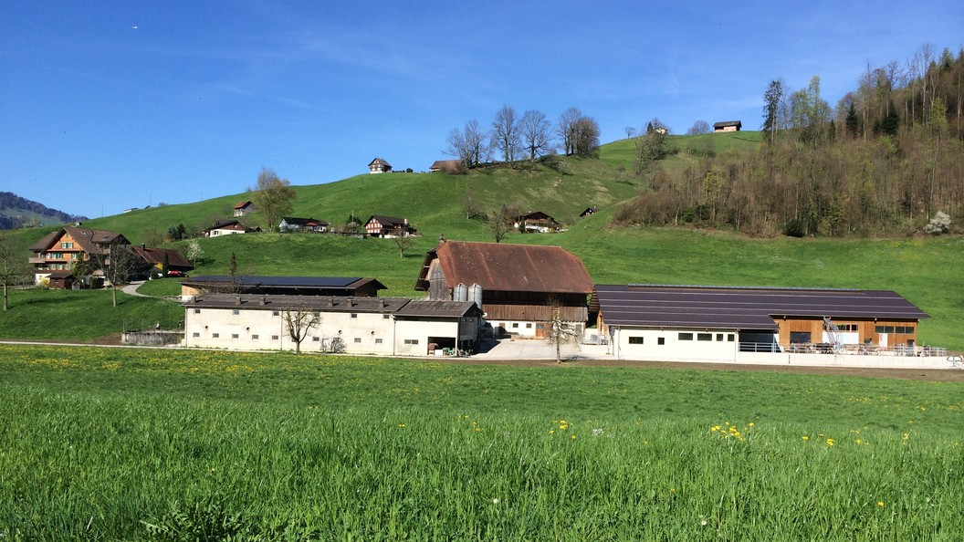 Betrieb Lussi, Hostetten 4, Oberdorf NW