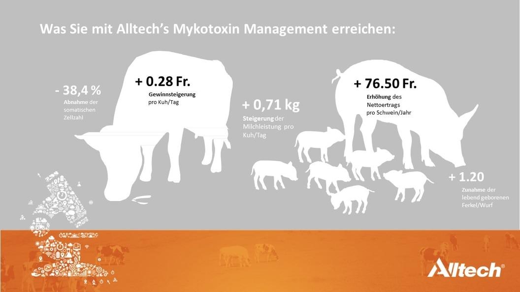 Mykotoxin-Management