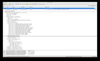 Screenshot of Wireshark output
