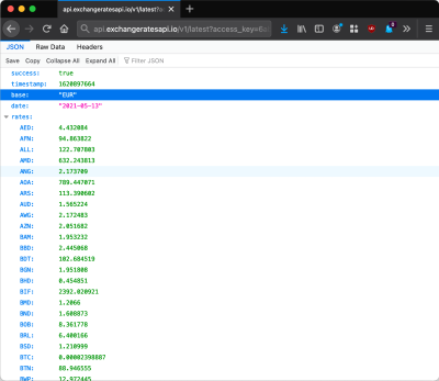 Viewing the response to the REST API on the browser