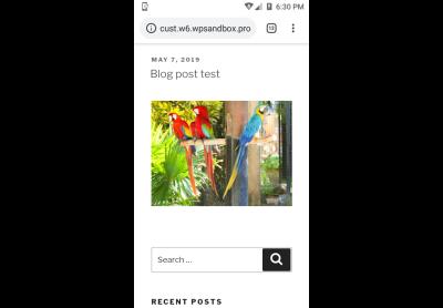 wordpress blog post demo image optimization mobile display