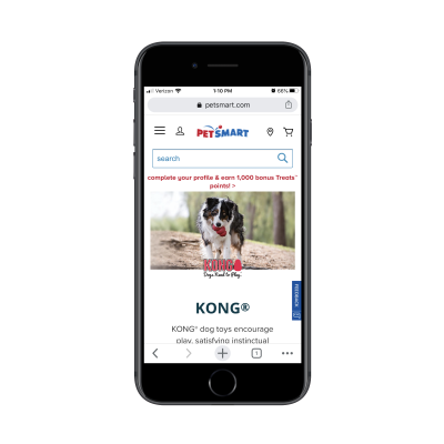 PetSmart category page for kong dog toys