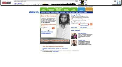 GEICO website 2005 - caveman