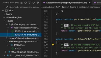 Todo Tree VSCode extension