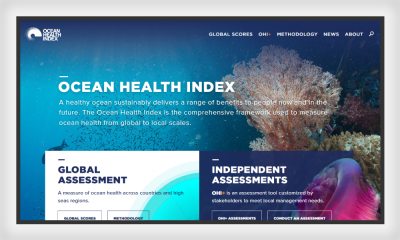 The Ocean Health Index website shows how both figure and ground can be used in web design