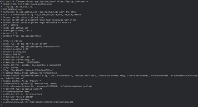 An image that shows the response from Github's root endpoint with the verbose option
