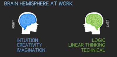 Visual.ly infographic: web designer vs. web developer right vs. left brain