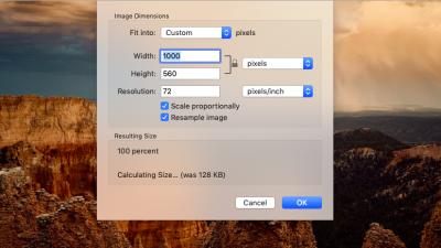 ImageKit resizing example on original Unsplash photo