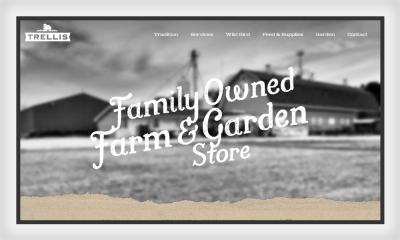 Trellis website features a good example of figure-ground relationship