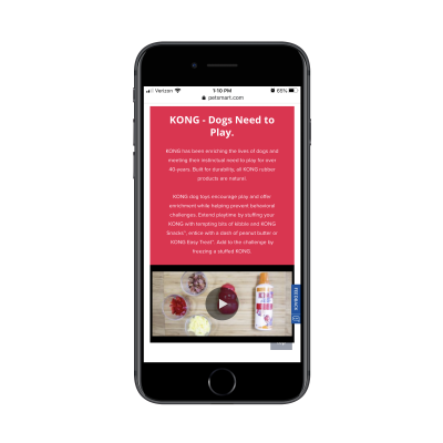 PetSmart Kong brand information, video and subcategories