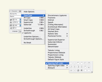 A software screengrab of Adobe InDesign's OpenType window, with 3 new options: 1st: an option to paste in characters to add space on the left side, 2nd: an option to paste in characters to add space on the right side, then an amount option.