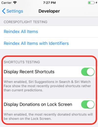 Screenshot of Siri debug settings