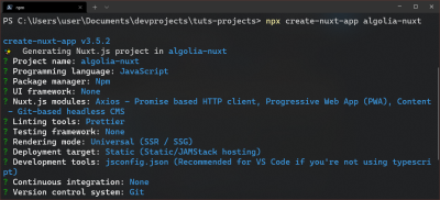 Nuxt installation options in terminal