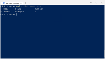 Doing a verbose list of all WSL instances running from within Powershell