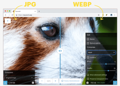 Comparison of the quality of JPG and WebP images