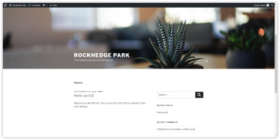a blank WordPress website, with the Twenty Seventeen theme installed