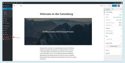 Gutenberg Demo