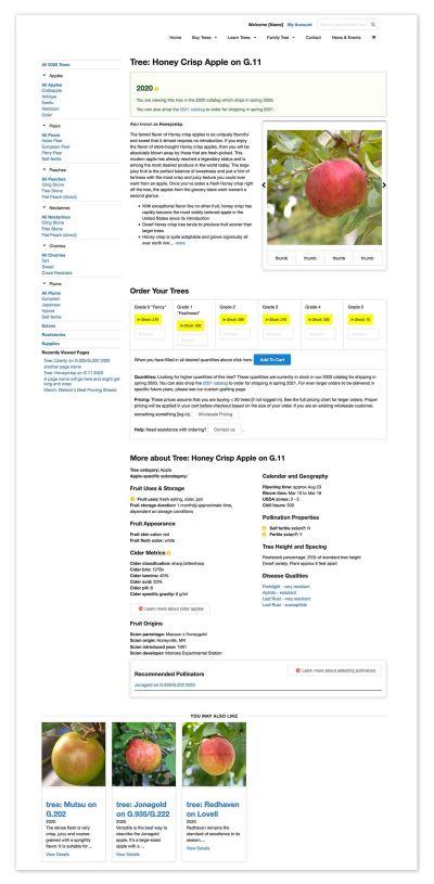 prototype of ecommerce app landing page