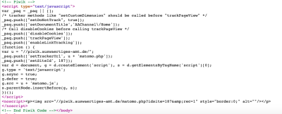 Screengrab of Matomo code from eu2020.de