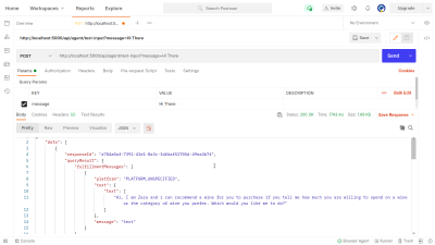 Testing the text-input API endpoint using Postman.