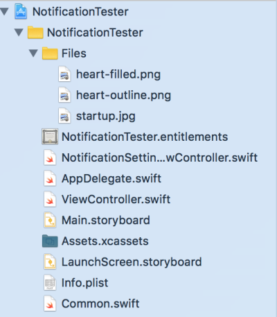 Project navigator shown in Xcode.